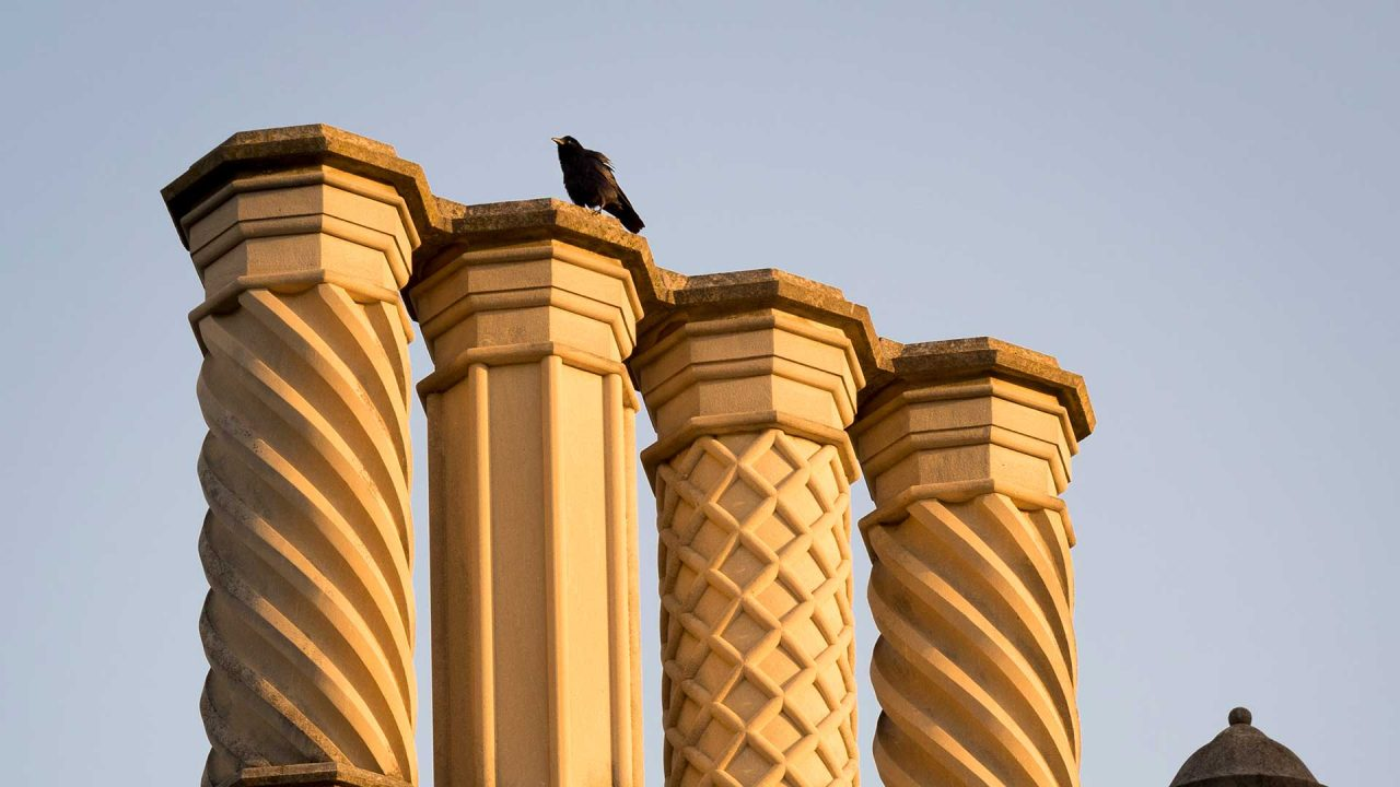 A bird rests atop one of the four chimney stacks over the Divinity School. Each of the chimneys is decorated with a different carved pattern.