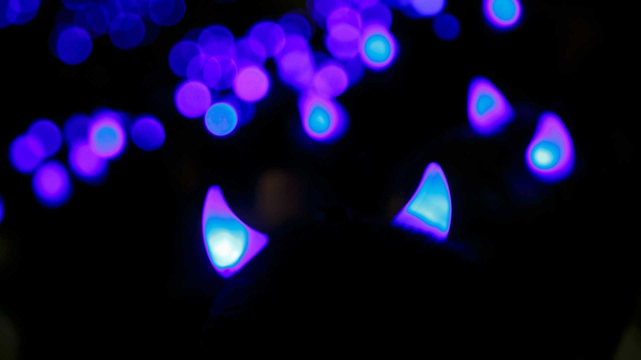 A crowd of light-up Blue Devil horns at night