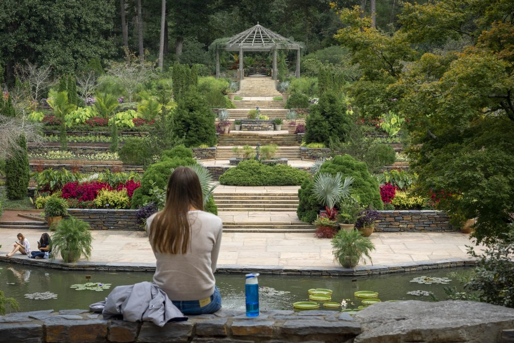 A visitor enjoys the view of the historic terraces from the Frances P. Rollins Overlook, Sarah P Duke Gardens
